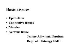 Basic tissues Epithelium Connective tissues Muscles Nervous tissue