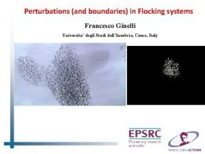 Perturbations and boundaries in Flocking systems Francesco Ginelli