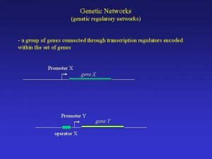 Genetic Networks genetic regulatory networks a group of