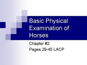 Basic Physical Examination of Horses Chapter 2 Pages