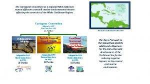 The Cartagena Convention as a regional MEA addresses