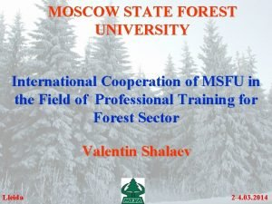 MOSCOW STATE FOREST UNIVERSITY International Cooperation of MSFU