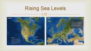 Rising Sea Levels Rising Sea Levels Food Webs