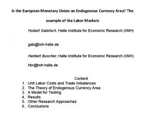 Is the European Monetary Union an Endogenous Currency