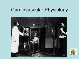 Cardiovascular Physiology Electrophysiology of the Heart Action Potentials
