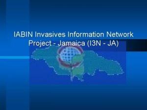 IABIN Invasives Information Network Project Jamaica I 3