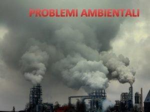 PROBLEMI AMBIENTALI Indice Problemi ambientali Effetti Biodiversit Bioaccumulo