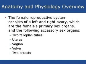 Anatomy and Physiology Overview The female reproductive system