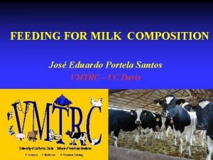 FEEDING FOR MILK COMPOSITION Jos Eduardo Portela Santos