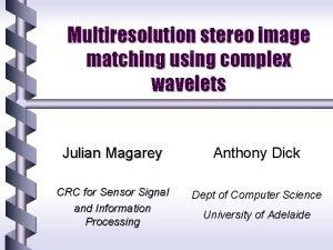 Multiresolution stereo image matching using complex wavelets Julian