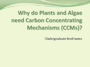Why do Plants and Algae need Carbon Concentrating