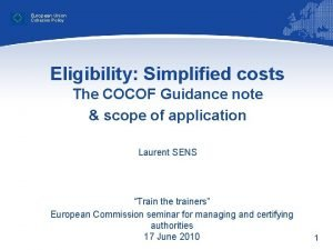 European Union Cohesion Policy Eligibility Simplified costs The