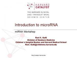 Introduction to micro RNA mi RNA Workshop Ravi
