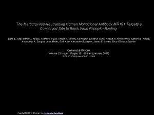 The MarburgvirusNeutralizing Human Monoclonal Antibody MR 191 Targets
