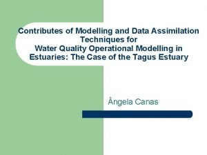 Contributes of Modelling and Data Assimilation Techniques for