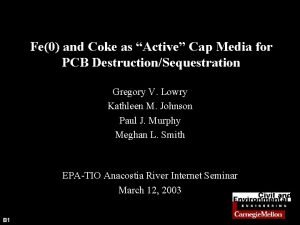 Fe0 and Coke as Active Cap Media for