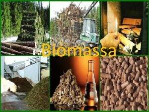 Biomassa BIOMASSA um material constitudo principalmente de substncias