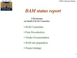 May 2003 LNGS OPERA Collaboration Meeting BAM status