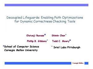 Decoupled Lifeguards Enabling Path Optimizations for Dynamic Correctness