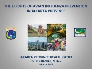 THE EFFORTS OF AVIAN INFLUENZA PREVENTION IN JAKARTA