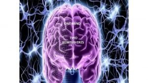 ONE MIND TWO HEMISPHERES CAN WE TRULY ESTABLISH