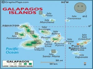 end Island isabela There are lots of animals