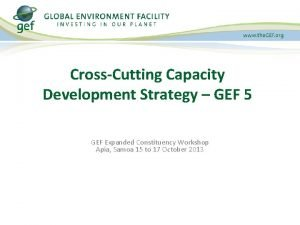CrossCutting Capacity Development Strategy GEF 5 GEF Expanded
