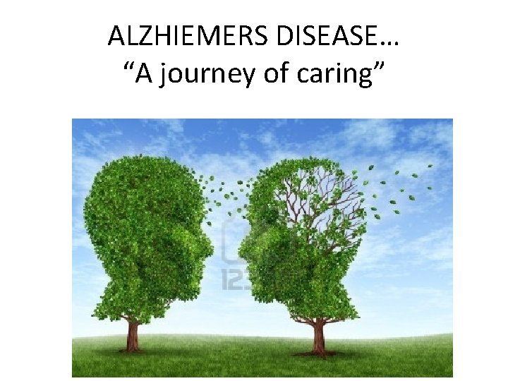 ALZHIEMERS DISEASE A journey of caring ALZHEIMERS DISEASE
