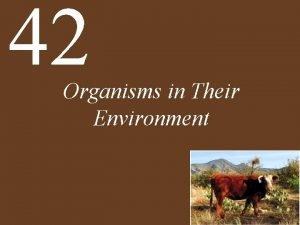42 Organisms in Their Environment Chapter 42 Organisms