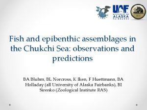 Fish and epibenthic assemblages in the Chukchi Sea