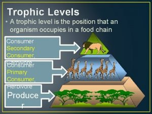 Trophic Levels A trophic level is the position