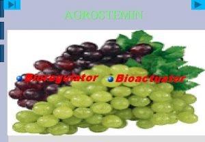 AGROSTEMIN Bioregulator Bioactuator Agrostemin Natural plant nutrient which