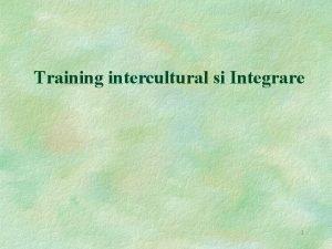 Training intercultural si Integrare 1 Caracterizare Trainingul intercultural