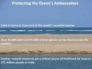 Protecting the Oceans Ambassadors India is home to