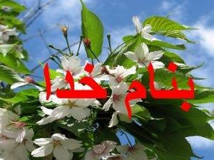 pain h Dr Jarahzade Intensivis Pain Pathways and