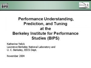 BIPS Performance Understanding Prediction and Tuning at the