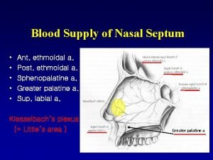 Blood Supply of Nasal Septum Ant ethmoidal a
