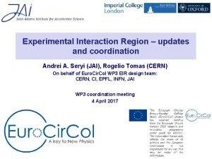 Experimental Interaction Region updates and coordination Andrei A