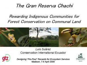The Gran Reserva Chachi Rewarding Indigenous Communities for