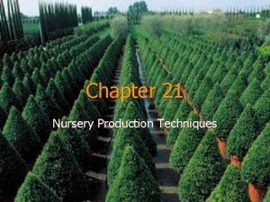 Chapter 21 Nursery Production Techniques n Nursery plants