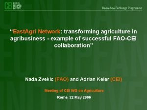 East Agri Network transforming agriculture in agribusiness example
