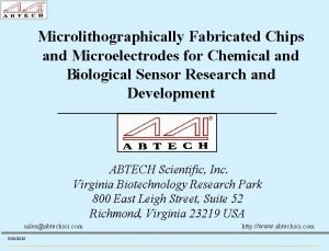 Microlithographically Fabricated Chips and Microelectrodes for Chemical and