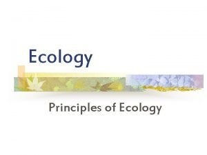 Ecology Principles of Ecology Organization in the biosphere