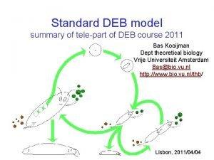 Standard DEB model summary of telepart of DEB
