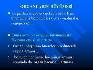 ORGANLARIN BYMES n Organlar meydana getiren hcrelerin bymeleri