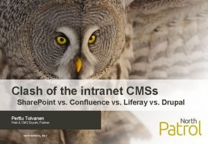 Clash of the intranet CMSs Share Point vs