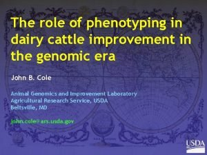 The role of phenotyping in dairy cattle improvement
