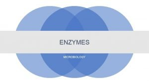 ENZYMES MICROBIOLOGY Enzymes An enzyme is usually a