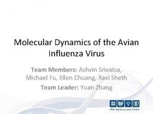 Molecular Dynamics of the Avian Influenza Virus Team