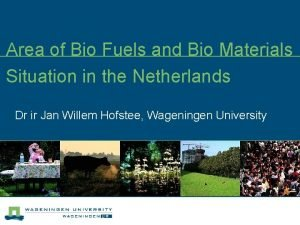 Area of Bio Fuels and Bio Materials Situation
